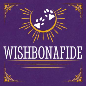 Wishbonafide Logo