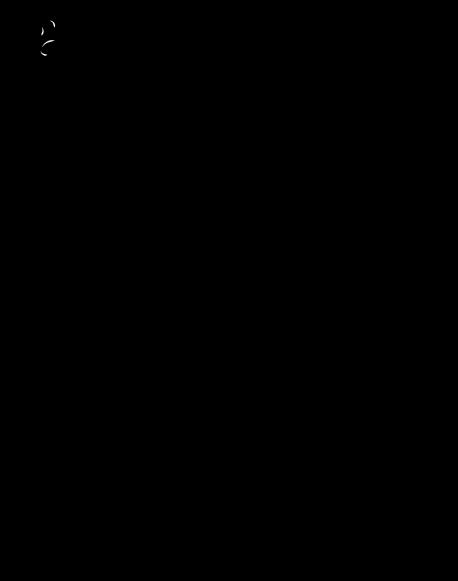 ArfProvRomeoJuliet2